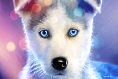 Невероятный щенок