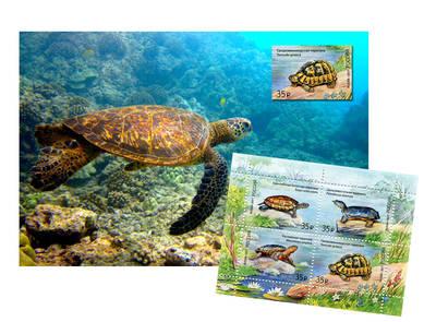 Набор «Черепаха» (открытка+марка)