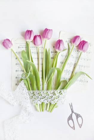 Цветочный романс